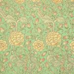 Wild TulipWP1532-6